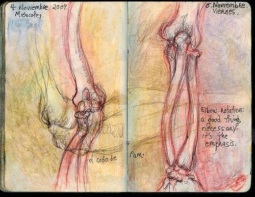 yogalila: Art, Anatomy, Asana - an awesome almanac for 2009
