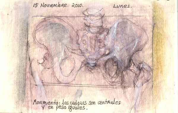 November15_2010_hip_enstance